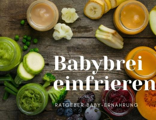 Babybrei aus verschiedenem Obst und Gemüse