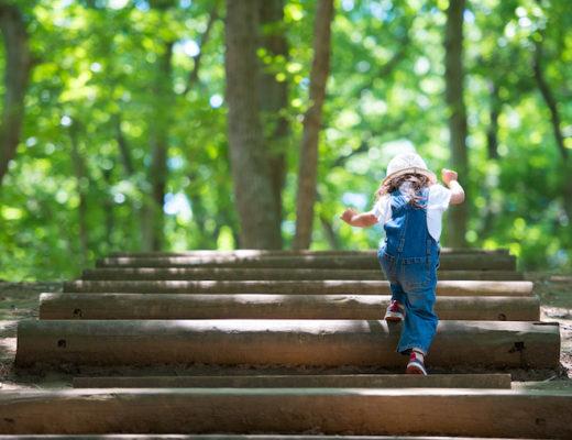 Kleinkind klettert über Holzstämme im Wald